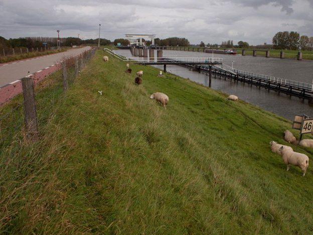 Lekdijk